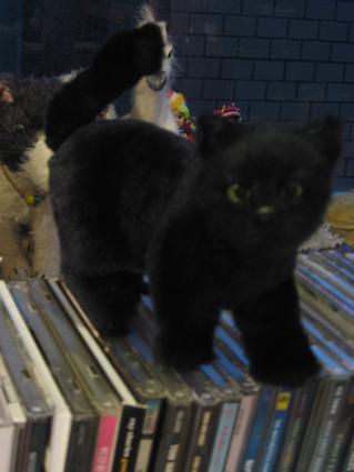 画室の黒猫ちゃん