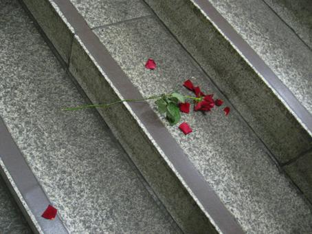 渋谷駅階段でバラバラになりかけてる薔薇