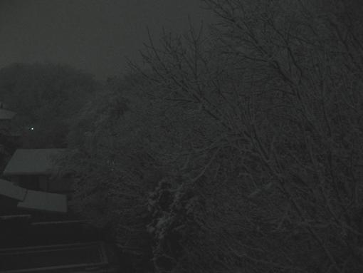 渓谷雪景1