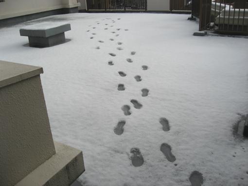 ベランダ雪足跡