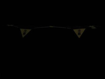0401夜空三角1
