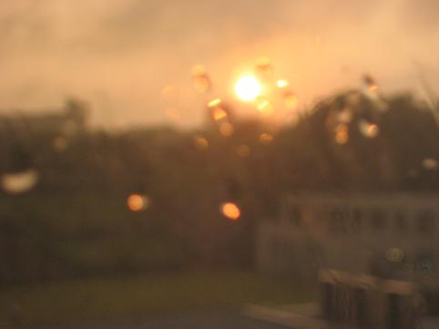 雨粒と夕陽
