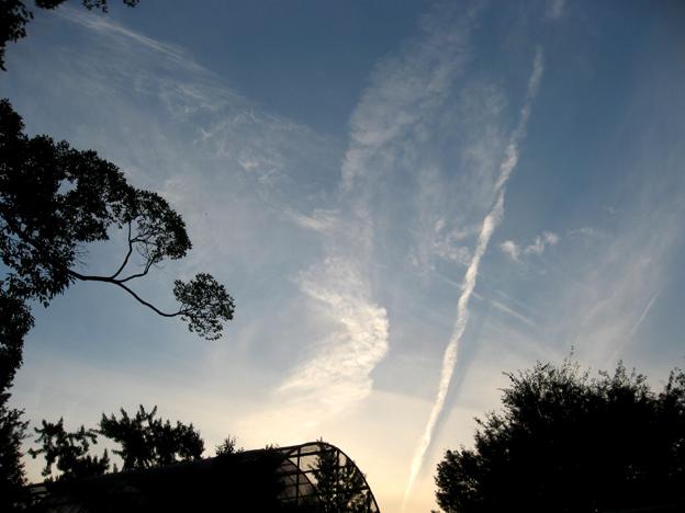 0928天使雲